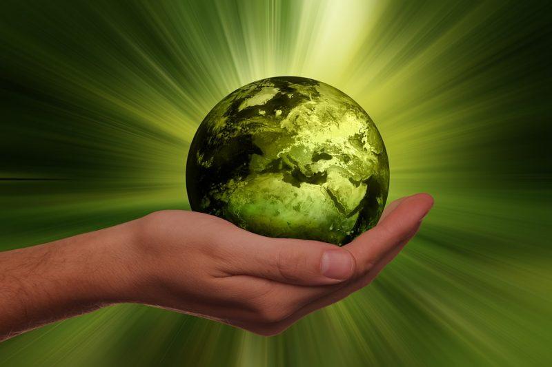 Nachhaltigkeit durch Biotextilien