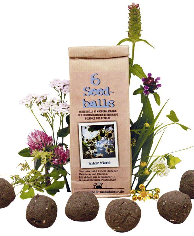 Seedballs Werbeartikel - Produktbild