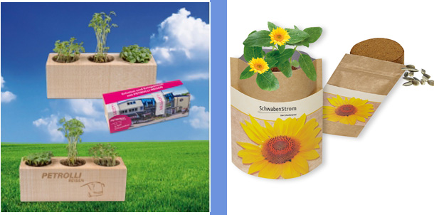 fruehling-werbeartikel-pflanzen