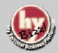 hybizz logo 1999