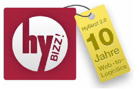 hybizz logo 2009