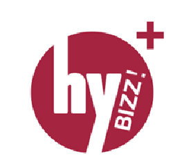 hybizz plus logo