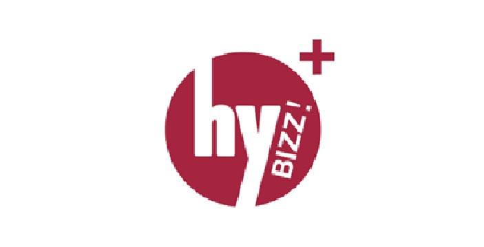hybizz-plus