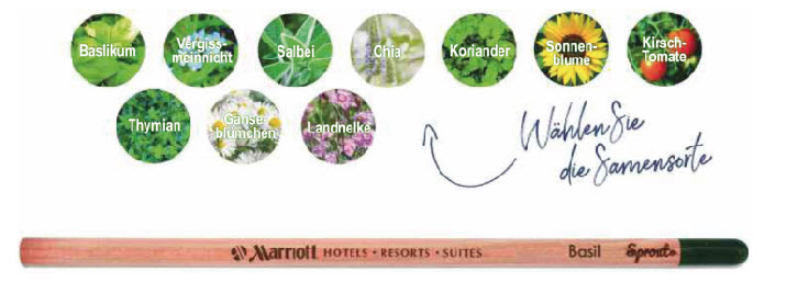 sprout-bleistift